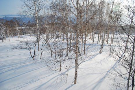Sceneries from Hirafu 3